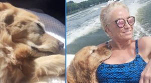 Tanya Tucker Asks For Prayers For Dog Kona – Has White Gums & Heartbeat Is 'Very Irregular'
