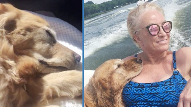 Tanya Tucker Asks For Prayers For Dog Kona – Has White Gums & Heartbeat Is 'Very Irregular' | Classic Country Music Videos