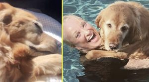 Tanya Tucker's Dog Kona Has Died