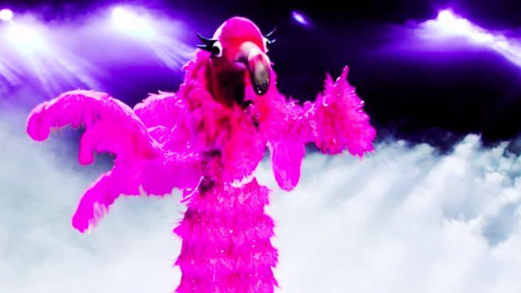 """Flamingo Advances To """"Masked Singer"""" Finale After Singing Leonard Cohen's """"Hallelujah"""""""