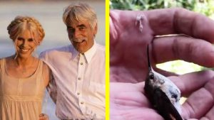 Sam Elliott and Daughter Cleo Rescue Hummingbird Trapped In Spider Web