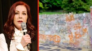 "Priscilla Presley Says She's ""Appalled"" By Vandalism At Graceland"
